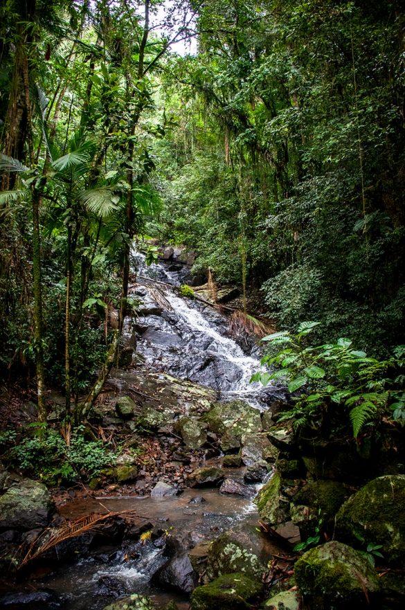 cachoeira vila itoupava
