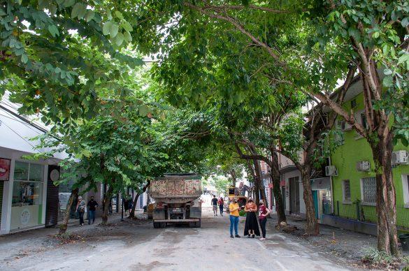 Reurbanização da Rua Curt Hering
