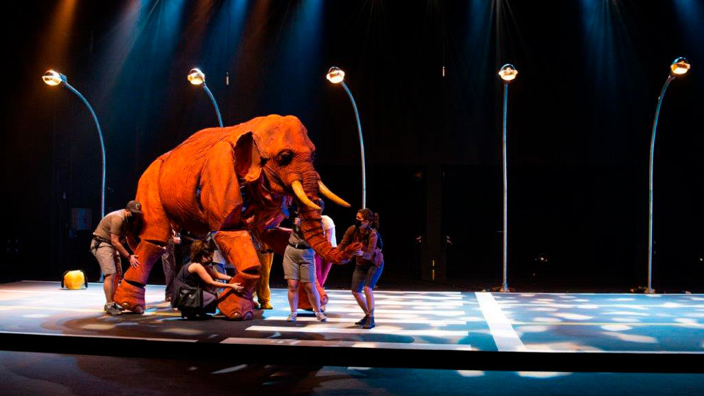 Festival de Teatro Universitário de Blumenau volta em formato virtual depois de dois anos parado